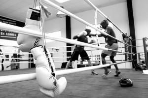 Boxkesztyű a Budopest Küzdősport webáruházból