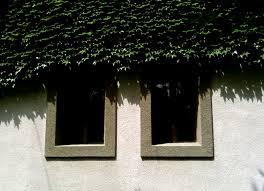 Műanyag ablakok?