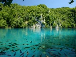 Horvát nyaralás